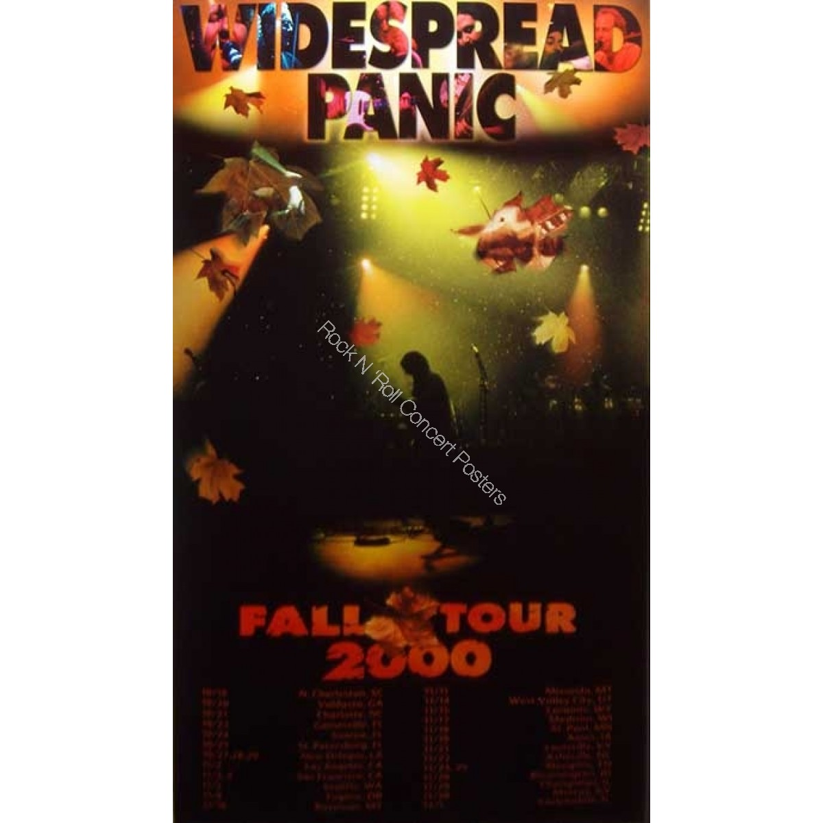 Widespread Panic Fall Tour 2000 L.E. Poster