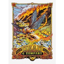 Dead & Company Folsom Field Boulder Colorado June 10th 2017 LE Screen Print Poster By AJ Masthay
